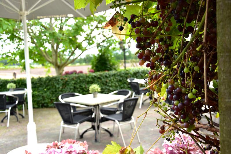 Terras Restaurant Hjir is 't met druiven